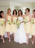 gemma-brides